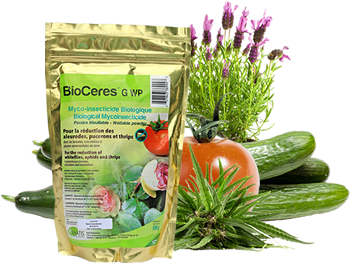Bag of Bioceres bioinsecticide