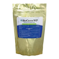 BioCeres WP bio-insecticide using the beauveria bassiana fungus